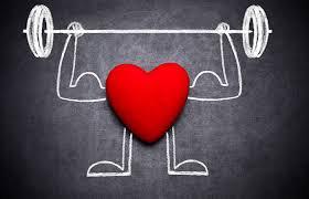 Chiết xuất Sơn tra có tác dụng ổn định nhịp tim